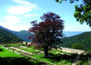 01 Jardins d'Arvières (credit photo ONF)