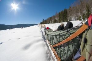 Les Plans d'Hotonnes (à 25 min) : ski alpin, ski nordique, stade international de biathlon, snowparc, raquettes, luges, airboard et now tubing, chiens de traineau, tir à l'arc, marche nordique, randonnée, rollers…