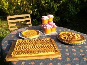 Desserts bio et maison